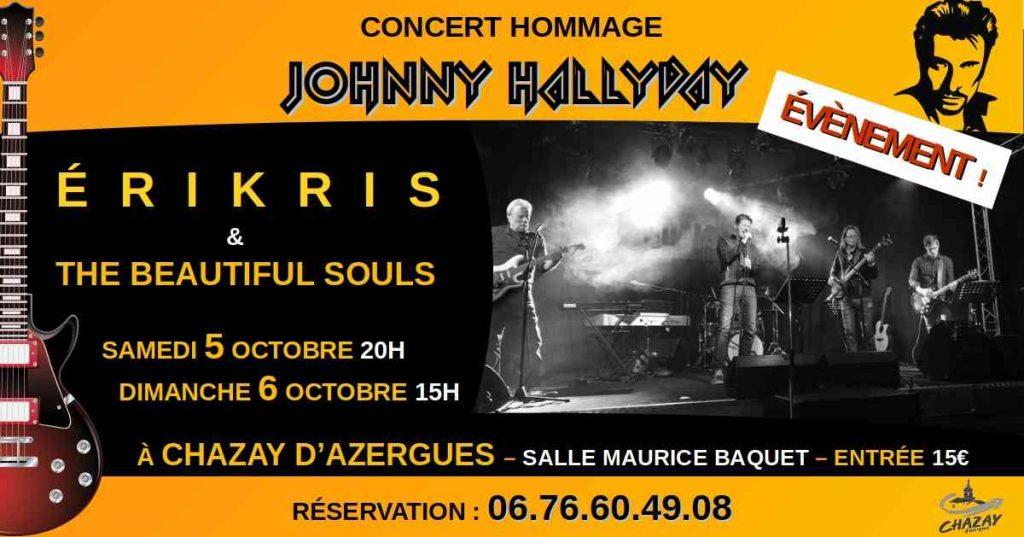 Concert hommage Johnny
